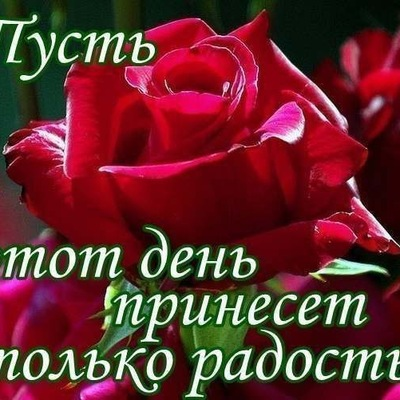 Анатолий Ахмедов, 19 мая , Киев, id156095177