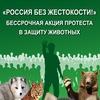 СПб «Россия без жестокости!»