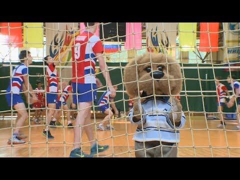Волейбол - Быстрее, выше, сильнее! Вместе с Хрюшей и ... (Выпуск 4) Детям о спорте