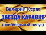 Валерий Курас Звезда караоке Караоке (Оригинальный минус)