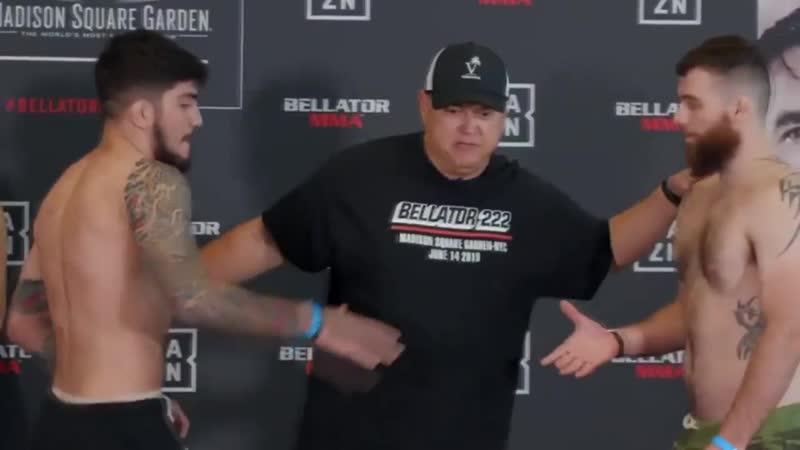 Шикарные и безумные нокауты Bellator 222 Обзор сегодняшнего турнира Макдональд Диллон и Соннен mp4