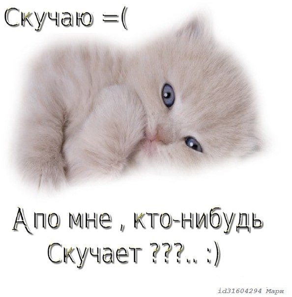 Фото 163877907