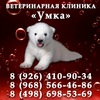 """Ветеринарная клиника """"УМКА"""""""