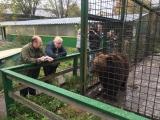 Сергей Миронов о строительстве в лесных массивах центров реабилитации для раненых диких животных