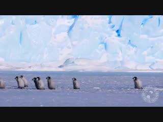 Тем временем в Восточной Антарктиде продолжается полярный день (октябрь 2018 года).