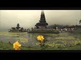 Wait Forever (LTN pres. Louis Tan Bootleg) - Estiva &amp Cardinal feat. Arielle Maren