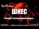 Архангельск побеждает Мусорную мафию