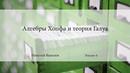 Лекция 4   Алгебры Хопфа и теория Галуа   Николай Вавилов   Лекториум