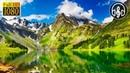 Невероятно Нежный Шум Озера и Пение Птиц. 8 Часов Расслабления для Глубокого Сна