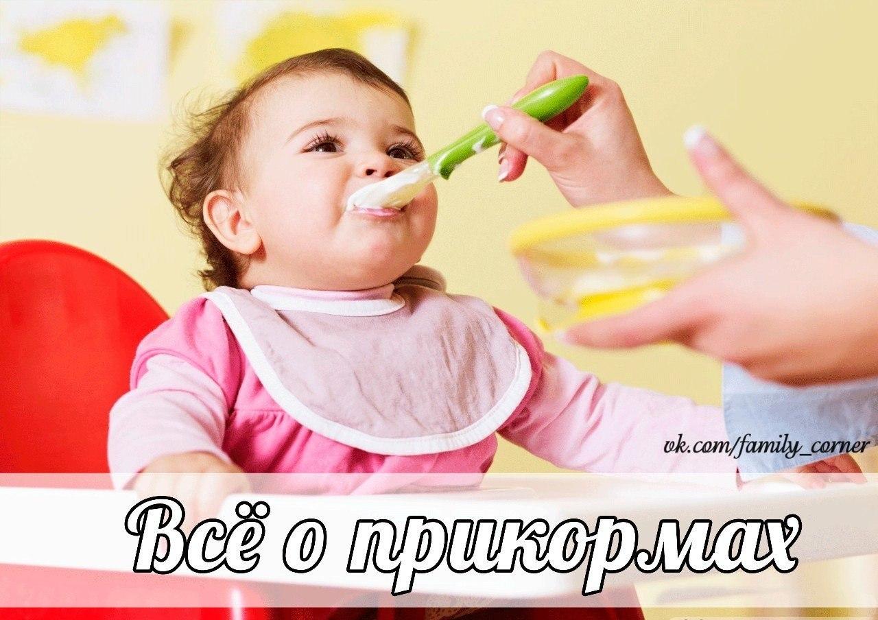 Питание ребенка в 6 месяцев фото