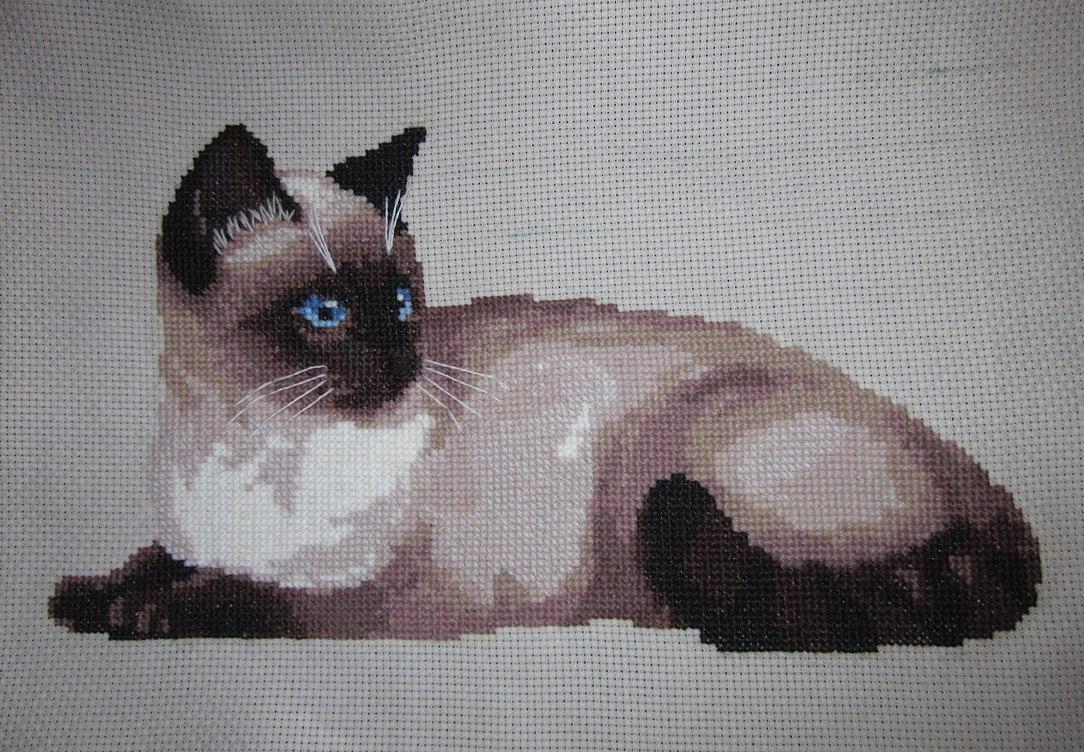 вышивка крестом сиамская кошка схема фото