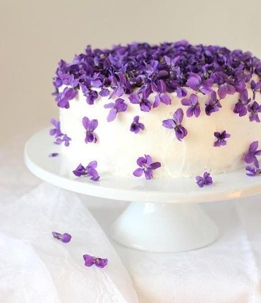 Заказали бы себе такой тортик на праздник Пишите в комментариях или