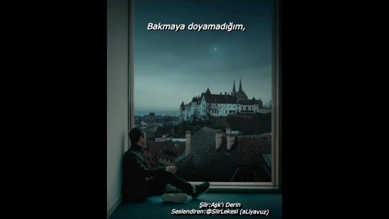 _Şiir Kokulu Adam_ (Ali Yavuz) on Instagram_ _Şiir.mp4