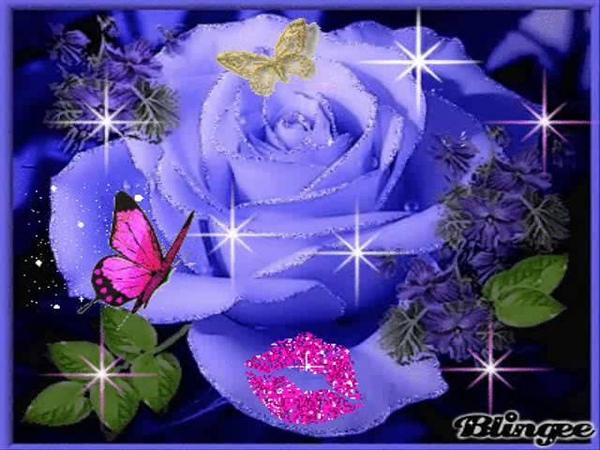 Buona Notte Amici Tutti