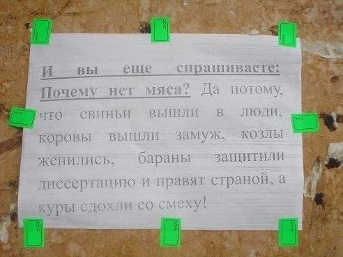 https://pp.vk.me/c543109/v543109513/156fe/VRS9Pm8KePU.jpg