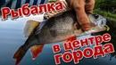 Да сколько тут рыбы в центре города Ловлю окуня и щуку на Китайские силикон и воблер с AliExpress