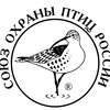 Союз охраны птиц России (СОПР)