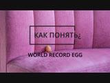 Как понять: world record egg