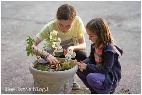 Идея для творчества с детьми: Создаем миниатюрный сад… (10 фото) - картинка