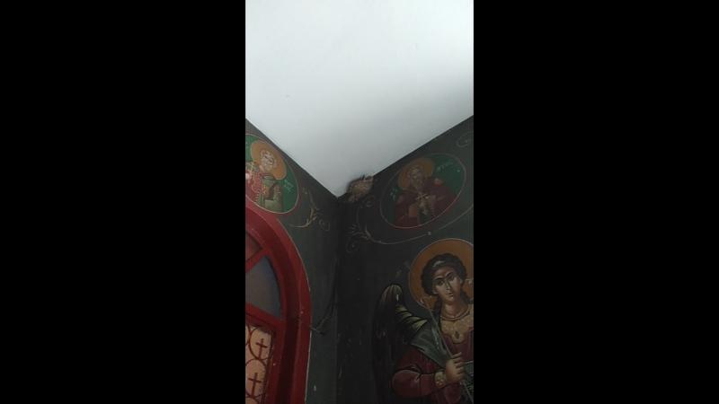 Ласточкины гнезда в Храме