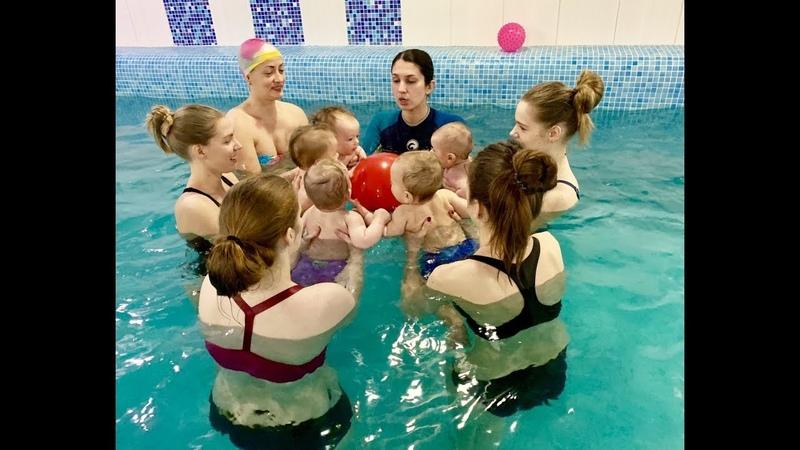 УЧИМ НЫРЯТЬ Обучение плаванию в бассейне в Минске для детей Курсы Секция занятия