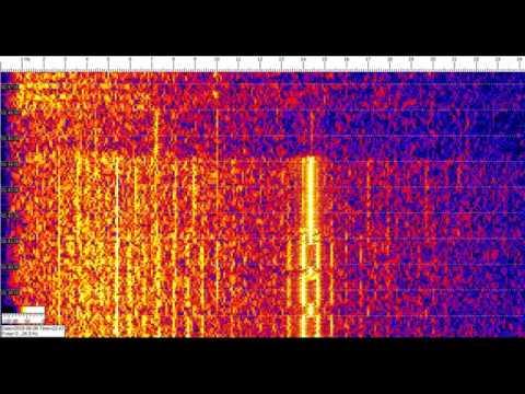 Суточная активность в диапазоне до 24 Гц (ОНЧ, VLF) 070619