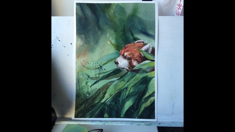 Watercolour painting Red panda Firefox Рисуем акварелью красная панда