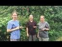 Женщины о Меняйлове. Женская группа и куст малины меняйлов музейгероев партизанскаяправдапартизан