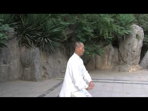 10 Basic Movements Taiji Movements
