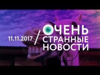11.11   ОСН #1. В Подмосковье девушка-почтальон развозит почту на коне