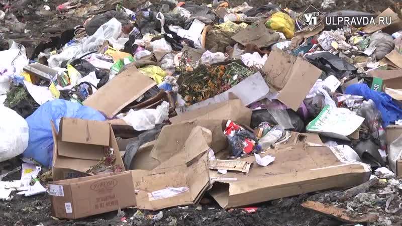 Кому нужна незаконная свалка Нечистоты с мусорки у Сенгилея стекают в поля, а ды