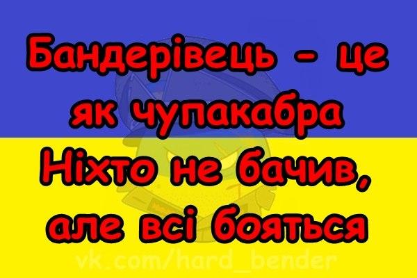 """Вторжение 44-го """"путинского гумконвоя"""" в Украину: значительная часть груза не соответствует заявленному в документах - Цензор.НЕТ 5590"""