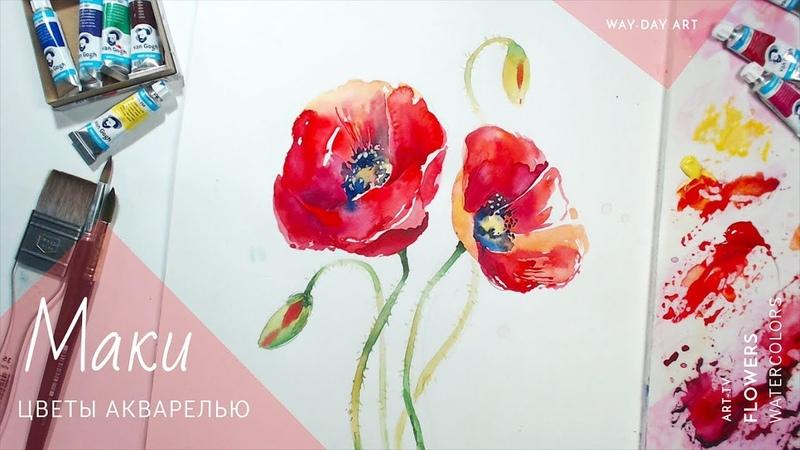 Рисуем цветы акварелью-Маки / How to Paint poppy flowers Watercolor Way-Day Art