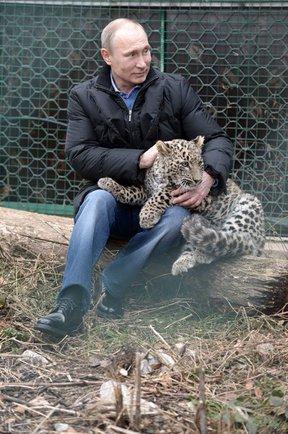 Сергей Анатольевич, Тула - фото №7