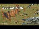 Red Alert 2 Alligators in Secret Laboratory 🐊