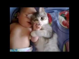 Кот любит малыша. Смотреть онлайн - Видео - bigmir)net