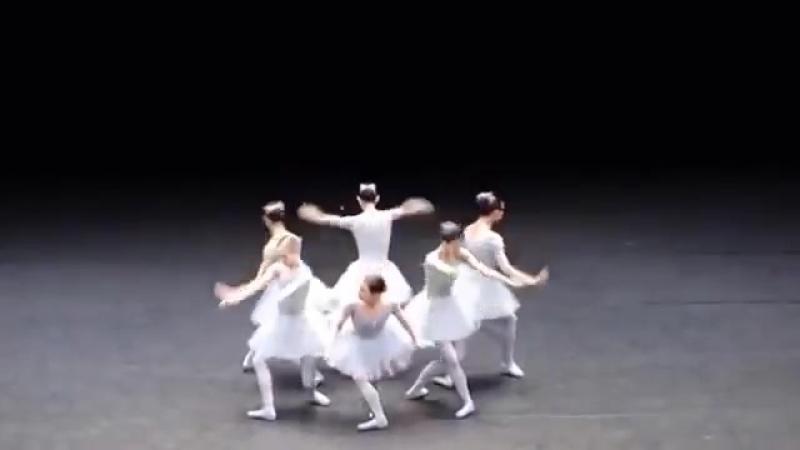Балет с юмором. Балерины жгут так, что обхохочешься.