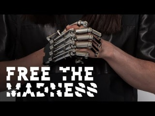 Steve AOKI ft. Machine Gun Kelly - Free The Madness *AUDIO*