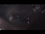 Ben Howard - Black Flies (Life Is Strange Farewell) Lyrics