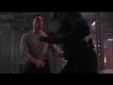 Jean-Claude Van Damme Vs Michael Jai White