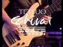 Tetsuo Sakurai The Invisible Way Live at Java Jazz Festival 2005