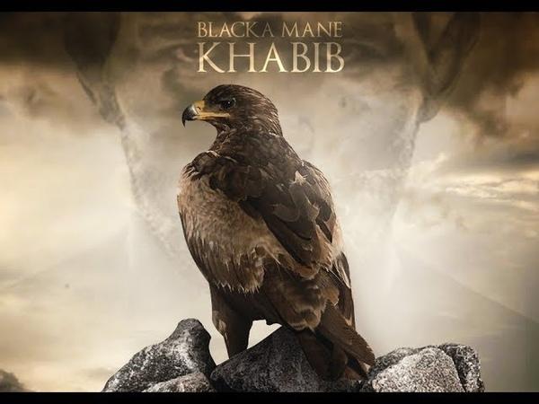 NEW Khabib The Eagle Nurmagomedov Highlights 2018 UFC 229 l Blacka mane - Khabib