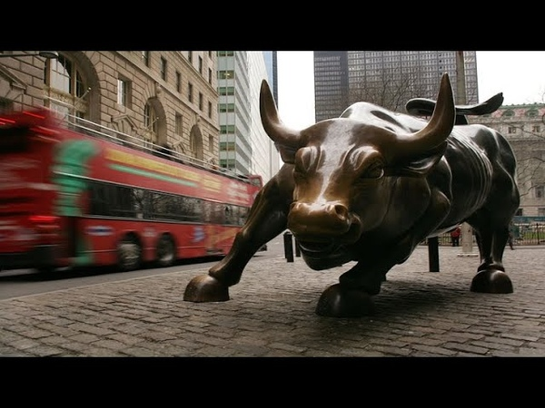 What drove bull market to record stampede