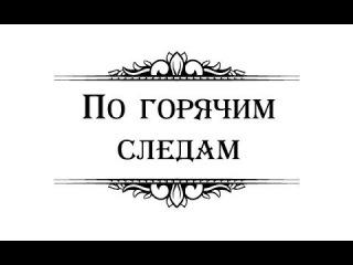In Hot Pursuit (2013) / По горячим следам (2013)