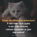 Елена Попова фото #8