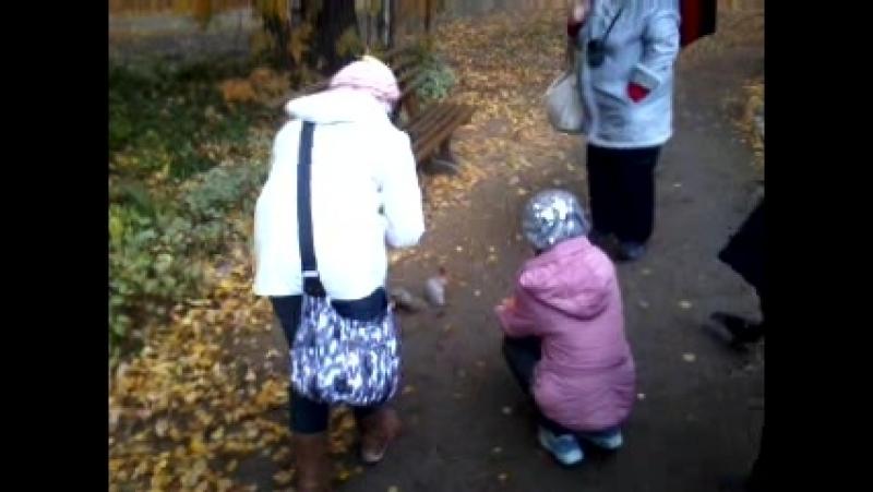 Video-2012-10-06-12-33-07.mp4