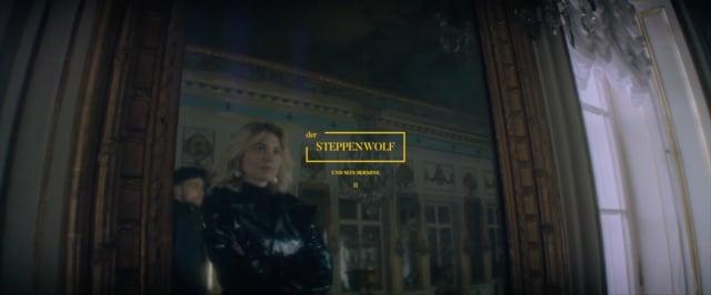 Der STEPPENWOLF - UND SEIN HERMINE II