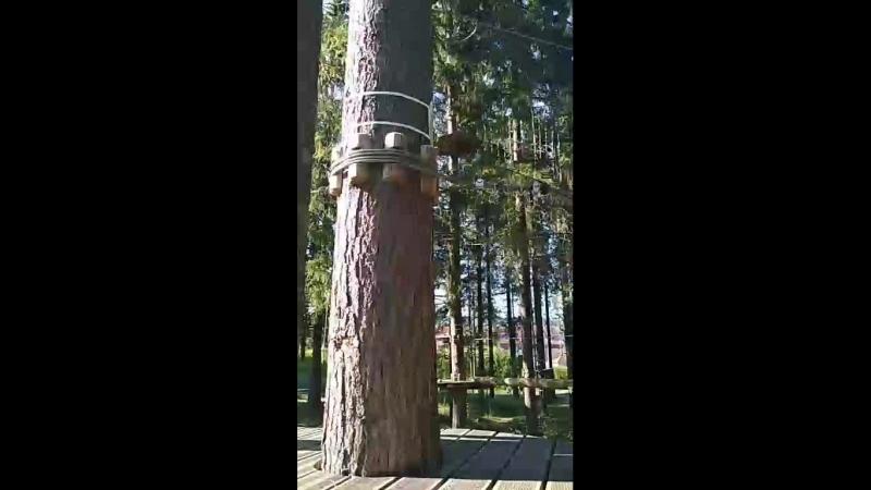 норд вэй парк в Петрозаводске