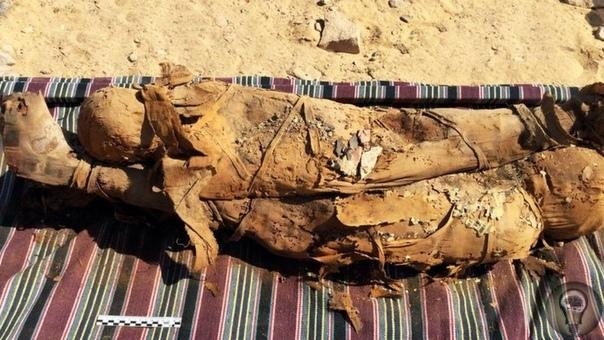 Вчера археологи обнародовали археологические находки в Египте