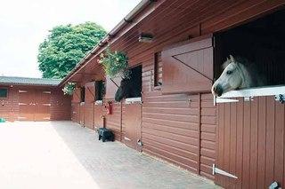 Известно, что бывает два способа вентиляции конюшни-это естественная и принудительная вентиляция.